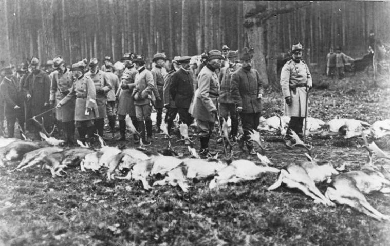 Кайзер Вильгельм и император Николай II на охоте