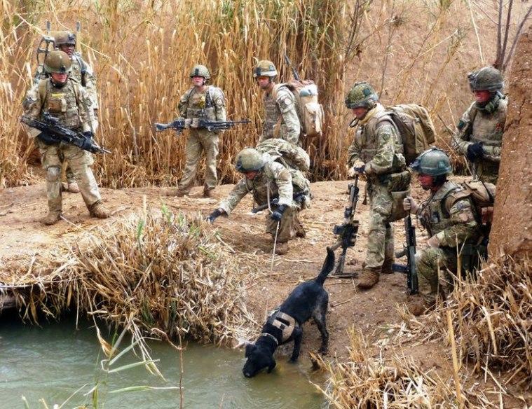 Королевский Ирландский полк в Ираке