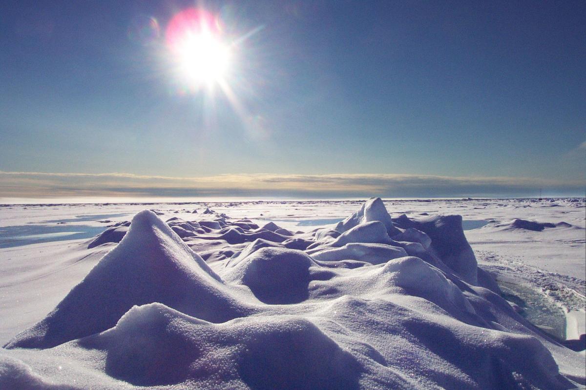 Столкновения интересов в Арктике 2015