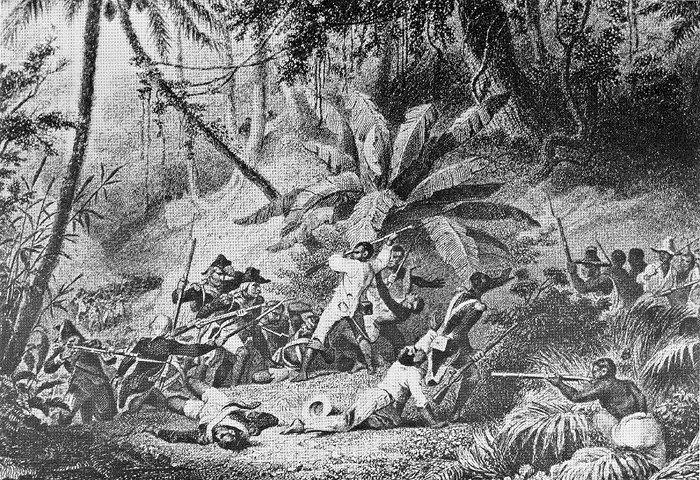 """slave revolution essay Slavery in nova scotia essay as the soil did not suit for agriculture black people were not used for """"plantation business"""" but mostly for """"personal domestic usage"""" slavery was an ordinary phenomena without a base connected with the law as officially nova scotia was """"free of slavery"""" it was the main attractions that guided people to this placethe suggestion that black people would."""